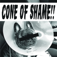faith-no-more-cone-of-shame-cover-ghostcultmag